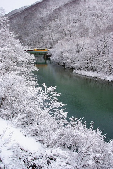 Yonesakasen_ogunikanamaru28