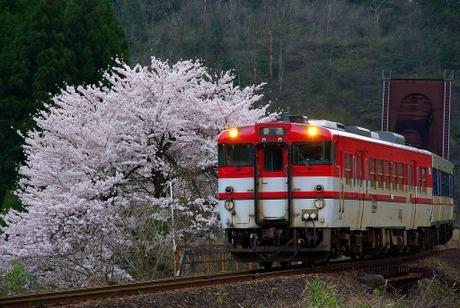 Banetsusaisen_igashimamikawa2