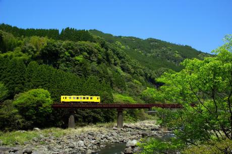 Kyuudaihonsen_sugikawachiamagase1