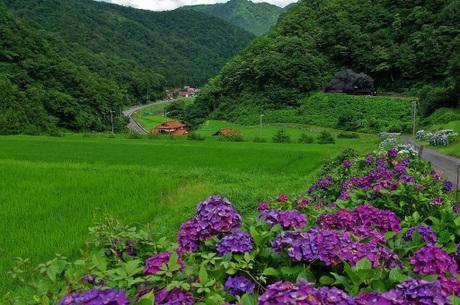 Yamaguchisen_tsuwanohunetairayama1