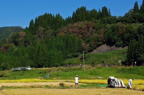 Tadamisen_nakagawamizunuma1