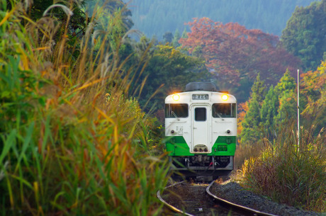 Tadamisen_yanaizusakamoto129