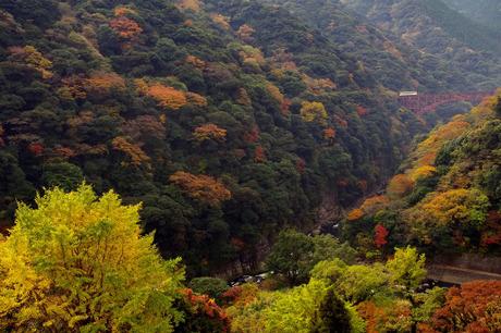 Minamiasotetsudou_tatenocyouyou1210