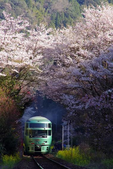 Kyuudaihonsen_bungonakagawa412