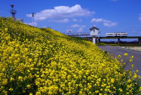 Chikihoudentetsu428