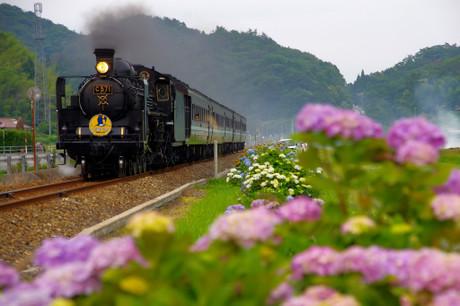 Yamaguchisen_623