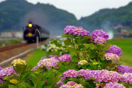 Yamaguchisen_72
