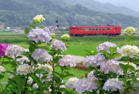 Yamaguchisen_625
