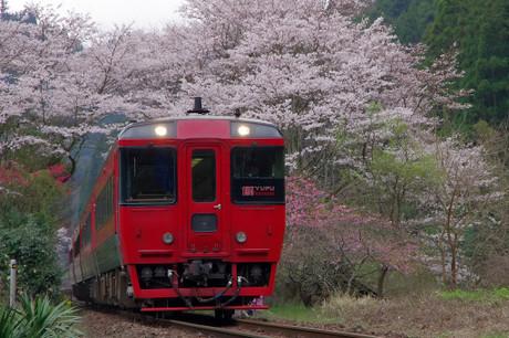 Kyuudaihonsen_423