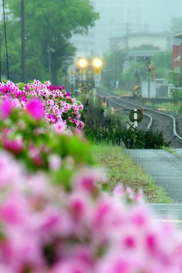 Yamaguchisen_57_2