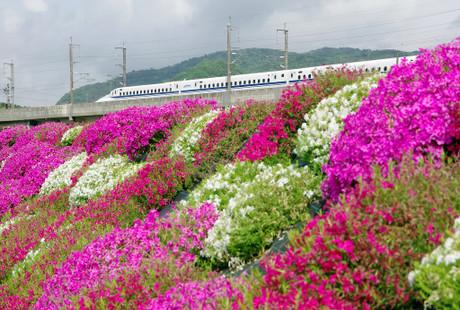 Sanyoushinkansen_516