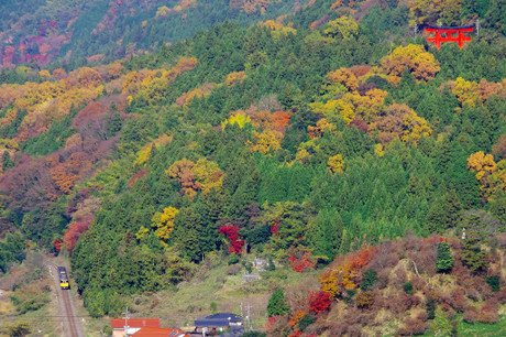 Yamaguchisen_1224