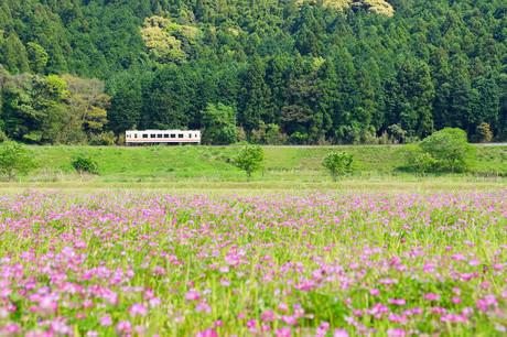 Heichikutetsudou_430