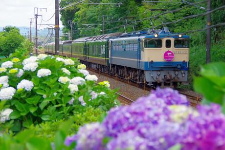 Sanyouhonsen_6232