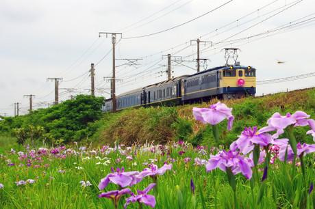 Sanyouhonsen_626