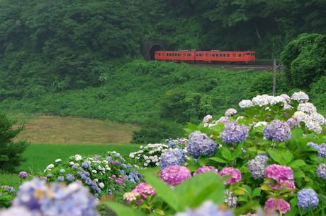 Yamaguchisen_77