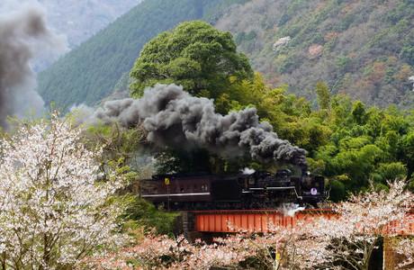 Yamaguchisen_410