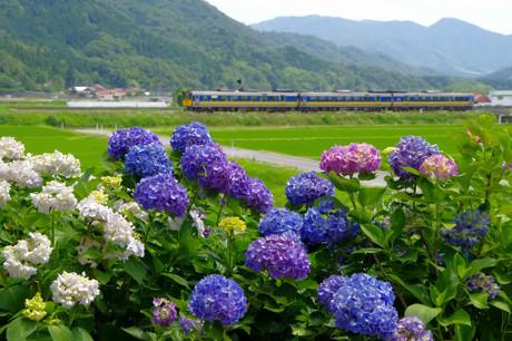 Yamaguchisen_628
