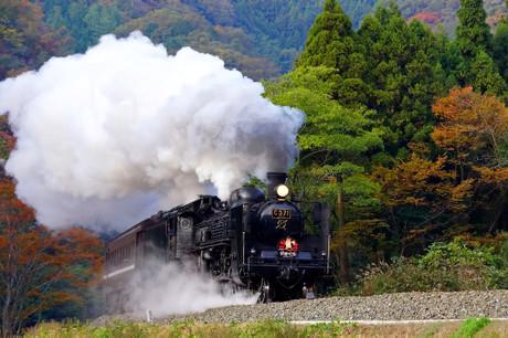 Yamaguchisen_1112
