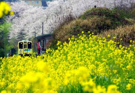 Heiseichikuhotutetsudou_418