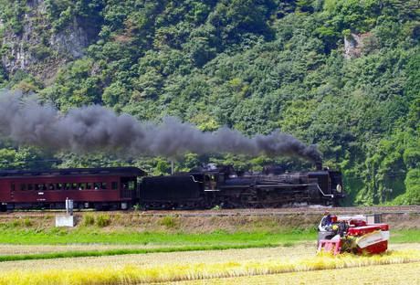 Yamaguchisen_917