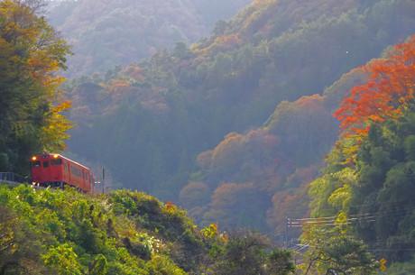 Yamaguchisen_1114