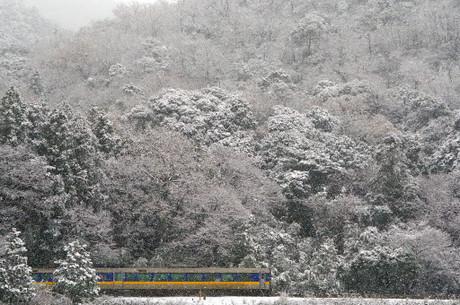 Yamaguchisen_13