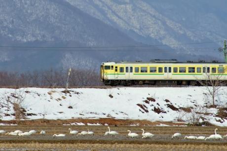 Echigose-220